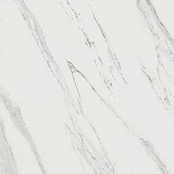 Calacatta OH64 JW02 60Х60 натуральный