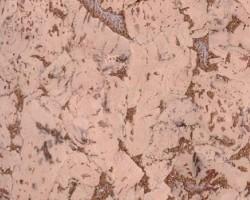 Настенная пробка CorkArt Wall PW 324 NY