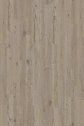 PAL3094 Дуб горный промасленный